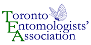 Toronto Entomologists' Association